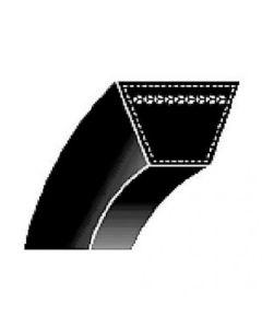 123172 | Belt - Classic V | 1/2
